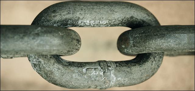 Eisenmangel vorbeugen - Lebensmittel mit einem hohen Eisengehalt - Marcus Mohs